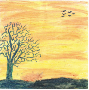 Soothing Sunset by M. Rohit,  Class 7, BPDAV School, Midhani, Hyderabad