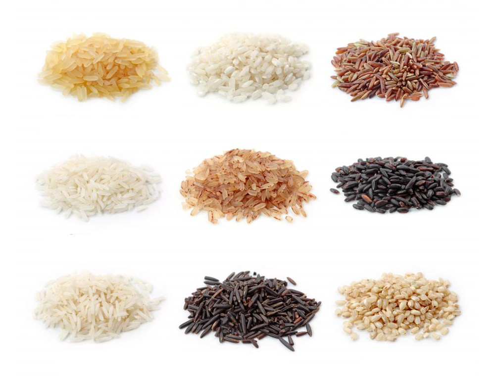 Conserving Native Varieties of Rice